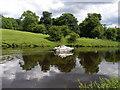 NZ4212 : Pleasure boating on the Tees by Carol Rose