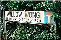 SK6443 : Willow Wong, Burton Joyce by Chris Downer