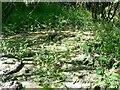 SU0781 : Wootton Bassett Mud Springs (6) by Brian Robert Marshall