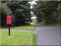 SU0017 : Dean Lane, Sixpenny Handley by Maigheach-gheal