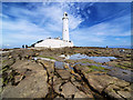 NZ3575 : St Mary's lighthouse from shore. by Steve  Fareham