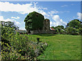 V9240 : Castles of Munster: Rossmore, Cork (3) by Mike Searle