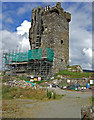 W1149 : Castles of Munster: Castledonovan, Cork (1) by Mike Searle