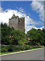 W2850 : Castles of Munster: Ballinacarriga, Co. Cork by Mike Searle