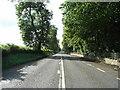 N8964 : The N3 Dublin Road by JP