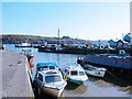 S7010 : The harbour at Passage East by Jim Woodward-Nutt