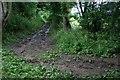 ST6056 : Crossroads in the wood by Neville Goodman