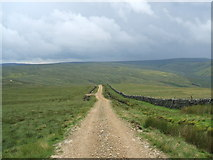 NY6148 : Looking east down an unmarked track by David Brown