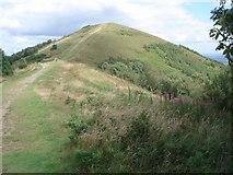 SO7641 : Pinnacle Hill by Trevor Rickard