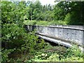 SJ0901 : Bridge over the Rhiw by Penny Mayes