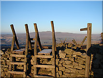SD8372 : Double Stile by John Lucas