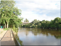 SO8455 : River Severn near the Worcester Rowing Club by Trevor Rickard