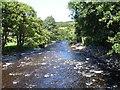 SJ0215 : River Vyrnwy by Penny Mayes