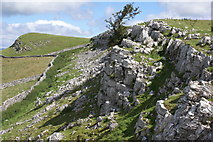 NY8008 : Little Longrigg Scar by Peter Standing