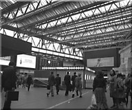 TQ3179 : Passenger Concourse, Waterloo Station by Dr Neil Clifton
