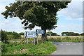 SX2981 : South Petherwin: near Botathan by Martin Bodman
