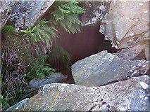 SN0729 : Rosebush quarry, exploring the adits: 4 by ceridwen
