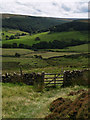 NZ6107 : Bridleway to Baysdale by Stephen McCulloch