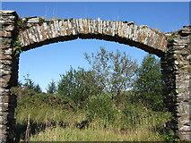 SN0729 : Old archway, Rosebush by ceridwen