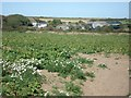 SM8329 : View towards Llannoy Farm by Simon Mortimer