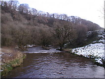 SK1273 : River Wye looking downstream towards Miller's Dale by David Sands