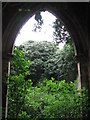 TF7732 : The ruin of St Andrew's church, Bircham Tofts by Evelyn Simak