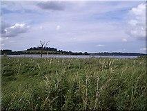 SK8805 : The View Northwards from Waderscrape Bird Hide at Rutland Water by Nigel Stickells