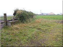 SM8625 : View to Trefgarn Owen by Jonathan Billinger