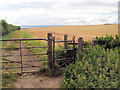 SK4790 : Gate to farmland. by Steve  Fareham