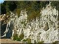 SU0359 : Miniature chalk quarry (a closer look), Wessex Ridgeway, near Stert by Brian Robert Marshall