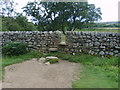 NY9027 : Squeeze stile in drystone wall by William Metcalfe