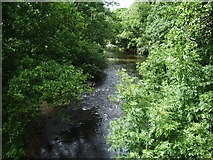 NY0637 : River Ellen by Alexander P Kapp