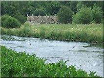 SP1106 : River Coln by Simon Richardson
