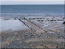 SH1626 : Exposed eroded pillars at low tide Porth Simdde by Peter Shone