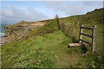 SH2035 : Coastal stile by Neville Goodman
