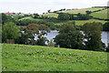 SX8258 : Fleet Mill Reach, River Dart by Kate Jewell