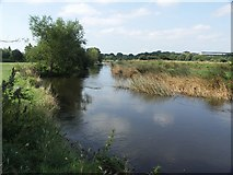 SZ1394 : River Stour looking South by Mike Smith