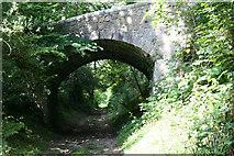 SX0656 : Bridge by mike hancock