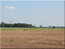 TF3828 : Farmland adjacent to Crowmarsh Farm by Kate Jewell