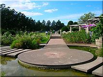 TQ3005 : Pond, Preston Park by Simon Carey