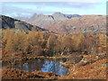 NY3101 : Tarn near Holme Ground by Andrew Hill