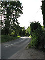 TG2933 : View south on Knapton Road (B1145) near Knapton House by Evelyn Simak