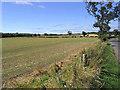 NU0511 : Farmland west of Whittingham by Walter Baxter