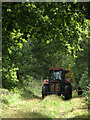 TG1235 : Grass cutting on bridleway leading NE to Hall Farm by Evelyn Simak