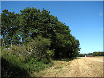 TG1440 : View north towards Holt Road (A148) by Evelyn Simak