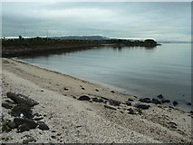 J3479 : Belfast Lough, Shoreline by william craig