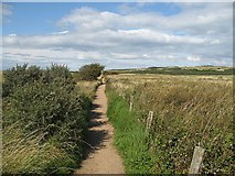 NT4681 : Yellow Mires path by Richard Webb