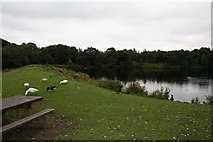 SD8632 : Rowley Lake, Burnley by Dr Neil Clifton