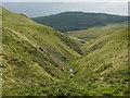SN7483 : Ravine of the Nant Dinas by Nigel Brown