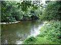 SO0890 : River Severn, Vaynor by Penny Mayes